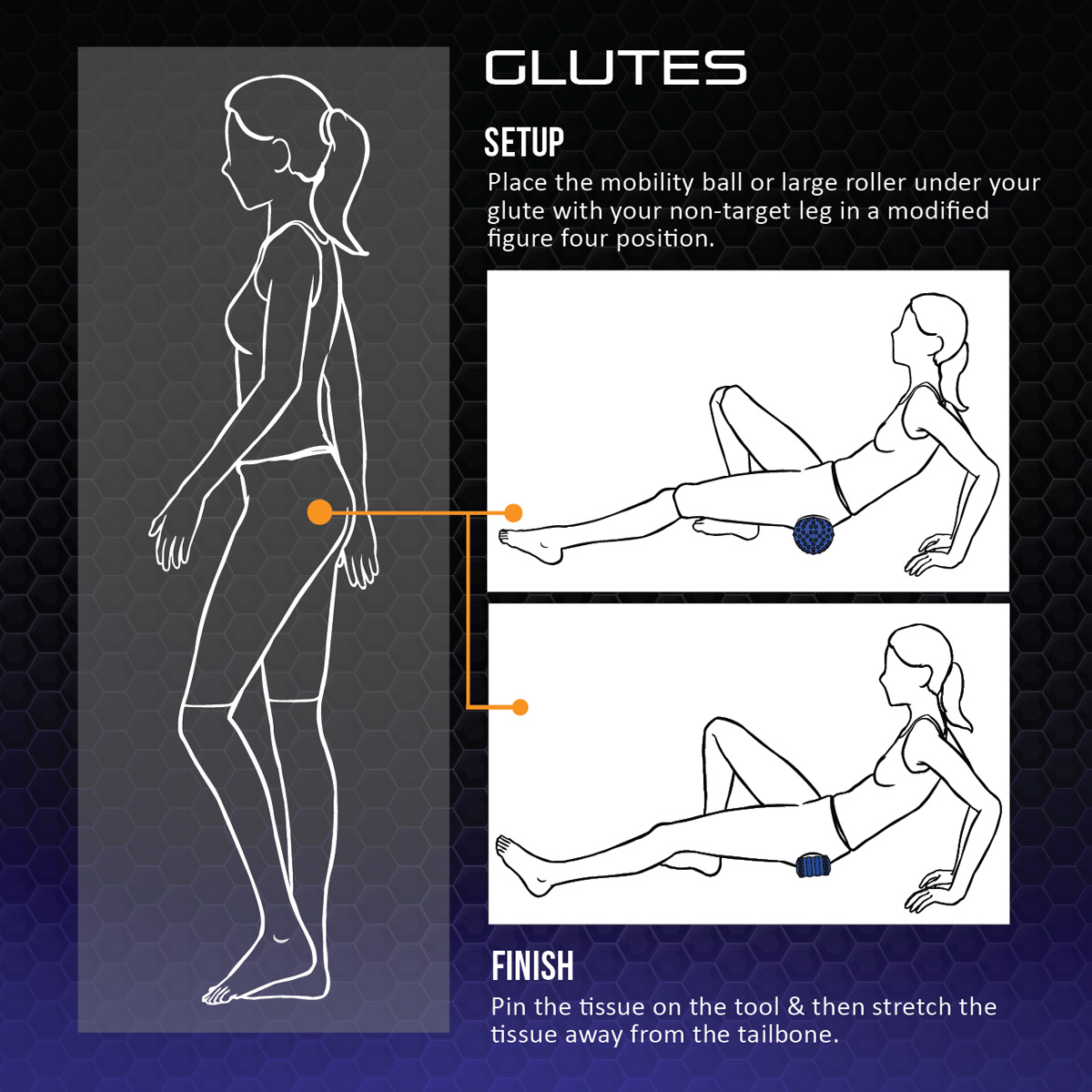wave5 glutes